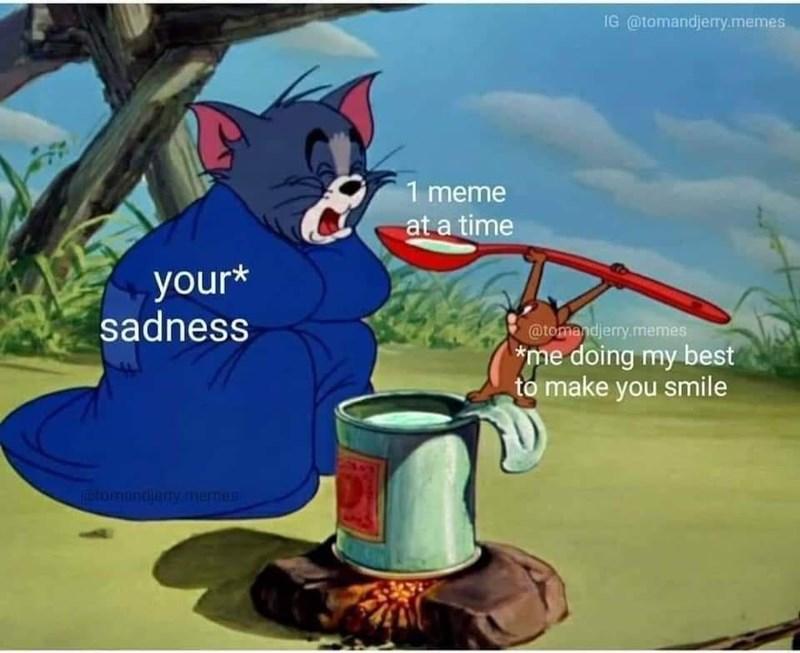 Vertebrate - IG @tomandjerry.memes 1 meme at a time your* sadness @tomandjerry.memes *me doing my best to make you smile mtomandiemy.memen