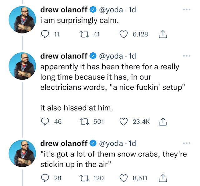 """Blue - drew olanoff O @yoda · 1d i am surprisingly calm. ... 11 27 41 6,128 1, drew olanoff O @yoda · 1d apparently it has been there for a really long time because it has, in our electricians words, """"a nice fuckin' setup"""" ... it also hissed at him. 46 17 501 23.4K 1, drew olanoff O @yoda · 1d """"it's got a lot of them snow crabs, they're stickin up in the air"""" 28 27 120 8,511 1,"""