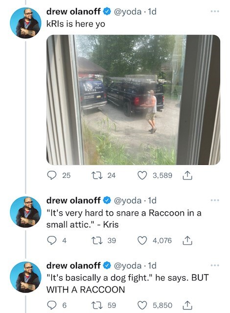 """Product - drew olanoff O @yoda · 1d kRIs is here yo ... 17 24 3,589 1 25 drew olanoff O @yoda 1d ... """"It's very hard to snare a Raccoon in a small attic."""" - Kris 4 27 39 4,076 1 drew olanoff O @yoda · 1d """"It's basically a dog fight."""" he says. BUT ... WITH A RACCOON 27 59 5,850 1"""