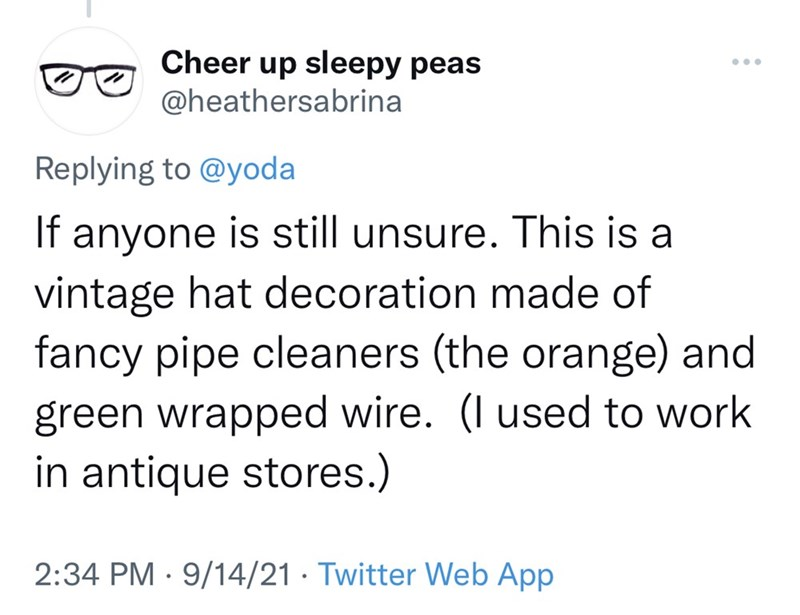 Font - Cheer up sleepy peas @heathersabrina ... Replying to @yoda If anyone is still unsure. This is a vintage hat decoration made of fancy pipe cleaners (the orange) and green wrapped wire. (I used to work in antique stores.) 2:34 PM · 9/14/21 · Twitter Web App