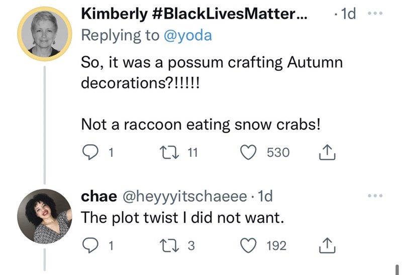 Font - Kimberly #BlackLivesMatter... · 1d Replying to @yoda So, it was a possum crafting Autumn decorations?!!!!! Not a raccoon eating snow crabs! 1 27 11 530 chae @heyyyitschaeee · 1d The plot twist I did not want. ... 27 3 192