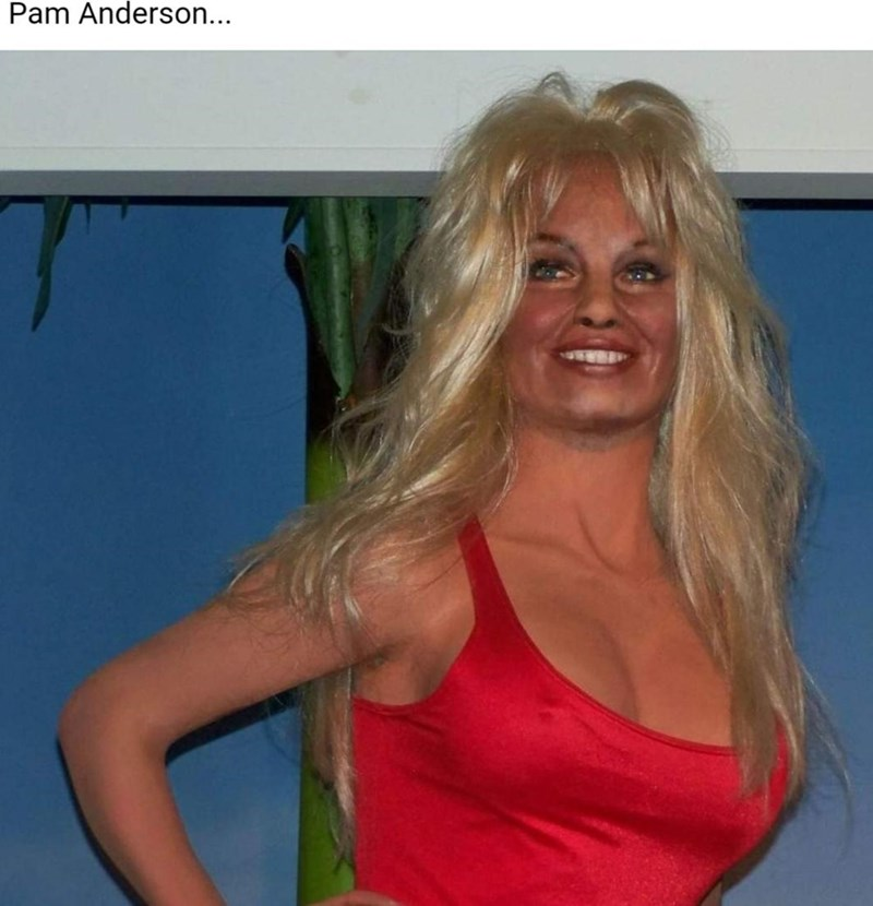 Joint - Pam Anderson...