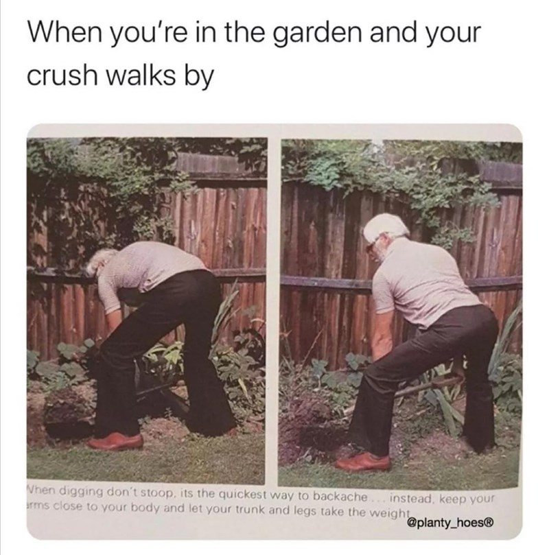 Shirt - When you're in the garden and your crush walks by Vhen digging don't stoop, its the quickest way to backache arms close to your body and let your trunk and legs take the weight instead, keep your @planty_hoes®