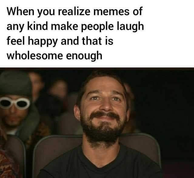Forehead - When you realize memes of any kind make people laugh feel happy and that is wholesome enough