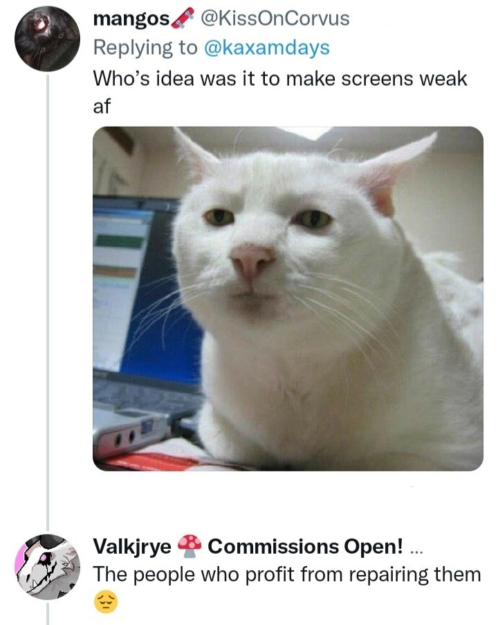 Cat - mangos @KissOnCorvus Replying to @kaxamdays Who's idea was it to make screens weak af Commissions Open! . Valkjrye The people who profit from repairing them