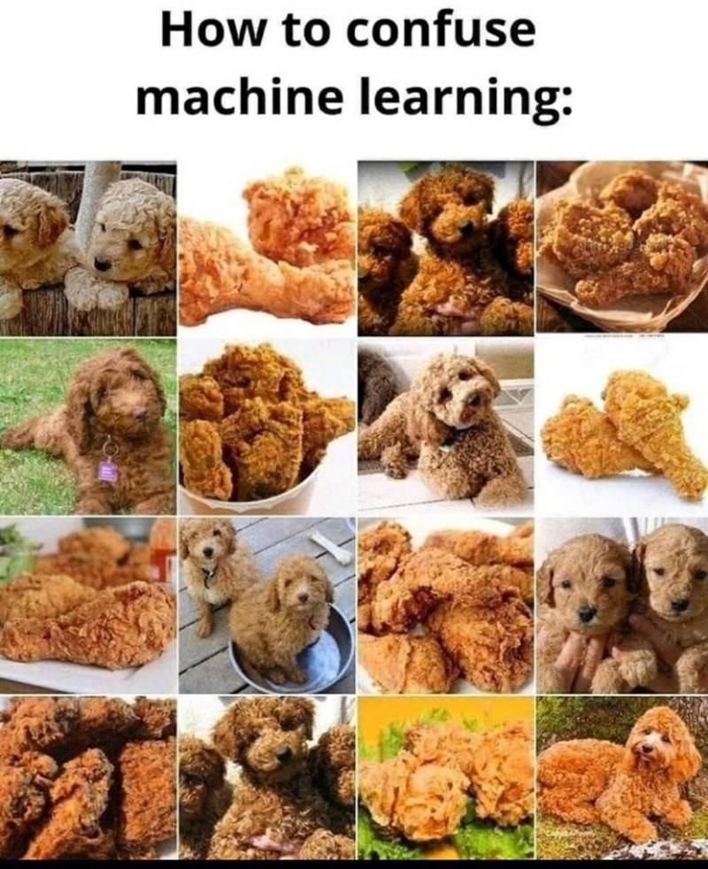 Dog - How to confuse machine learning: