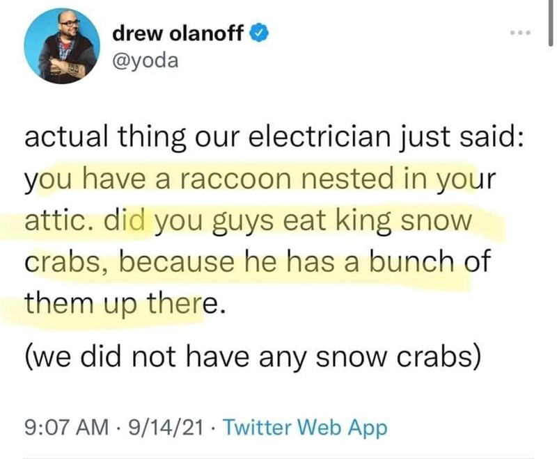 Font - drew olanoff @yoda actual thing our electrician just said: you have a raccoon nested in your attic. did you guys eat king snow crabs, because he has a bunch of them up there. (we did not have any snow crabs) 9:07 AM · 9/14/21 · Twitter Web App