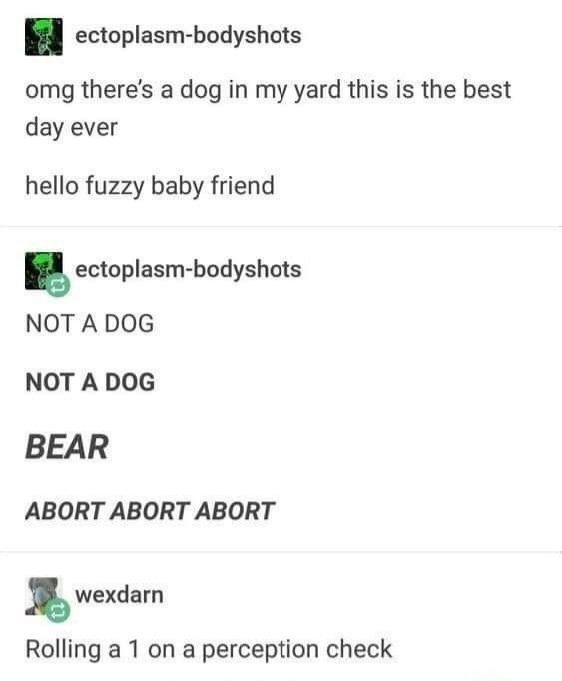 Rectangle - ectoplasm-bodyshots omg there's a dog in my yard this is the best day ever hello fuzzy baby friend ectoplasm-bodyshots NOT A DOG NOT A DOG BEAR ABORT ABORT ABORT wexdarn Rolling a 1 on a perception check