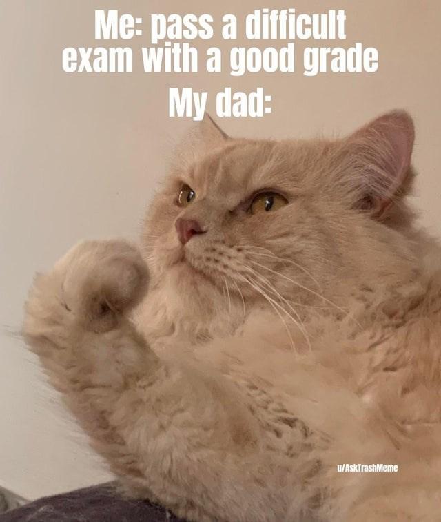Cat - Me: pass a difficult exam with a good grade My dad: u/AskTrashMeme