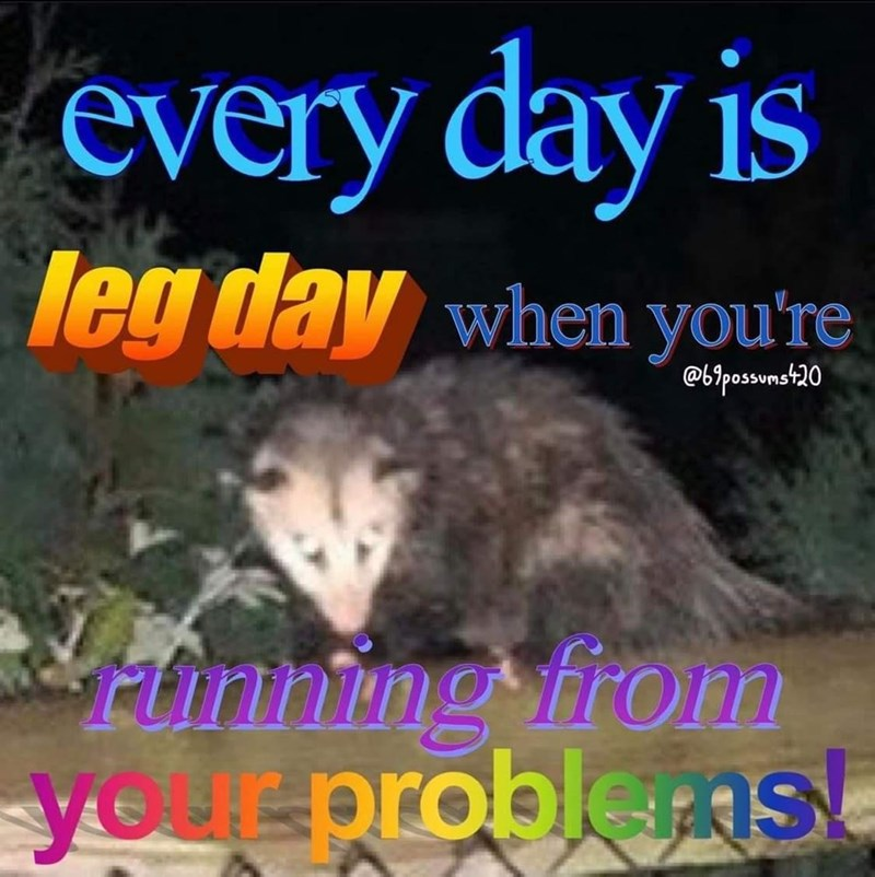 Carnivore - every day is leg day when you're @b?possunst20 Funning fron your problenst