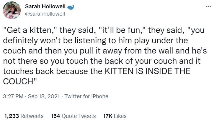 """Font - Sarah Hollowell ... @sarahhollowell """"Get a kitten,"""" they said, """"it'll be fun,"""" they said, """"you definitely won't be listening to him play under the couch and then you pull it away from the wall and he's not there so you touch the back of your couch and it touches back because the KITTEN IS INSIDE THE COUCH"""" 3:27 PM - Sep 18, 2021 - Twitter for iPhone 1,233 Retweets 154 Quote Tweets 17K Likes"""