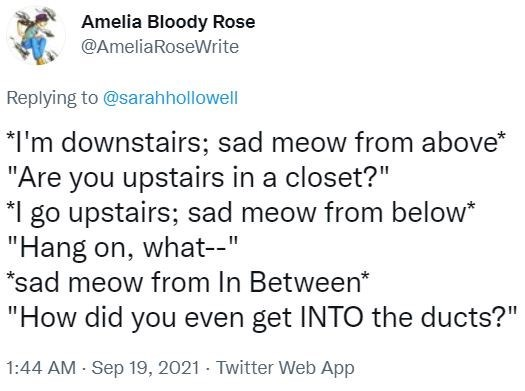 """Font - Amelia Bloody Rose @AmeliaRoseWrite Replying to @sarahhollowell *I'm downstairs; sad meow from above* """"Are you upstairs in a closet?"""" *1 go upstairs; sad meow from below* """"Hang on, what--"""" *sad meow from In Between* """"How did you even get INTO the ducts?"""" 1:44 AM - Sep 19, 2021 · Twitter Web App"""