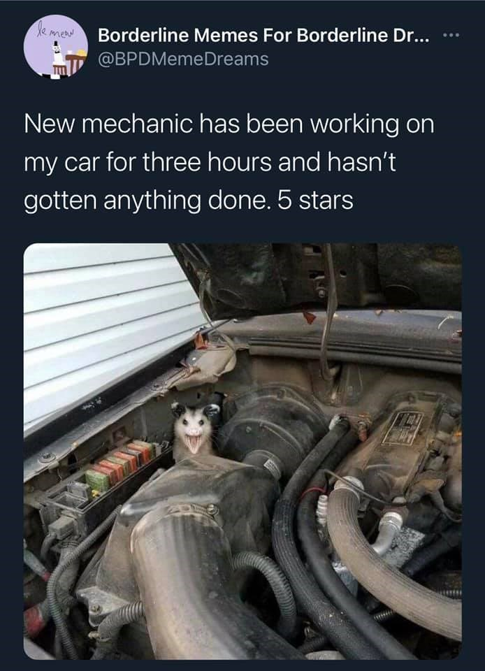 Human body - eme Borderline Memes For Borderline Dr... @BPDMemeDreams New mechanic has been working on my car for three hours and hasn't gotten anything done. 5 stars