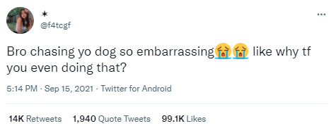 Font - @f4tcgf Bro chasing yo dog so embarrassing f f like why tf you even doing that? 5:14 PM - Sep 15, 2021 - Twitter for Android 14K Retweets 1,940 Quote Tweets 99.1K Likes