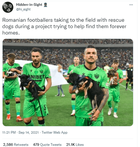Shirt - Hidden-in-Sight ... @hi sight Romanian footballers taking to the field with rescue dogs during a project trying to help find them forever homes. ANIBET 11:21 PM - Sep 14, 2021 - Twitter Web App 2,586 Retweets 479 Quote Tweets 21.1K Likes