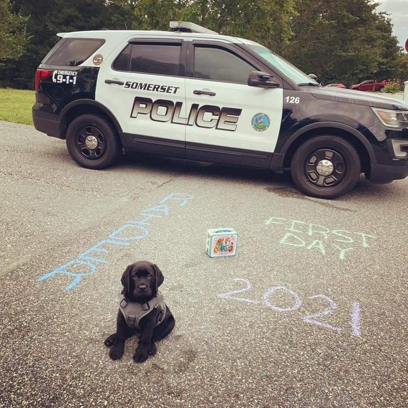 Wheel - 126 (9-1-1 EMERGENCY SOMERSET POLICE FIRST DAT 2021