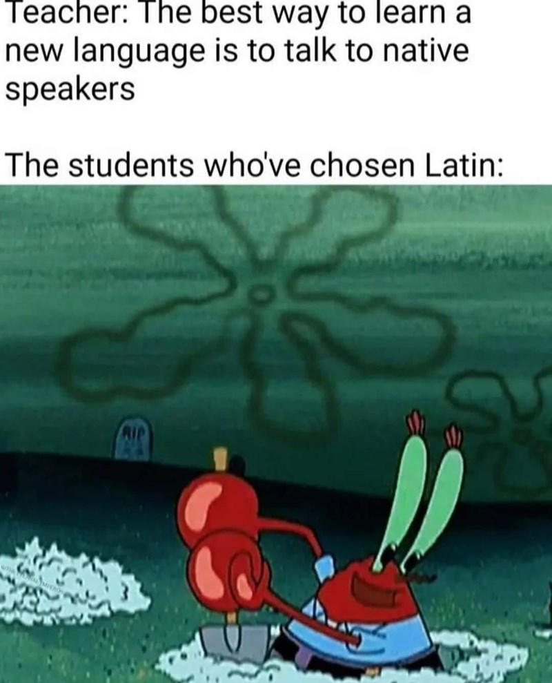 Water - Teacher: The best way to learn a new language is to talk to native speakers The students who've chosen Latin: RIP