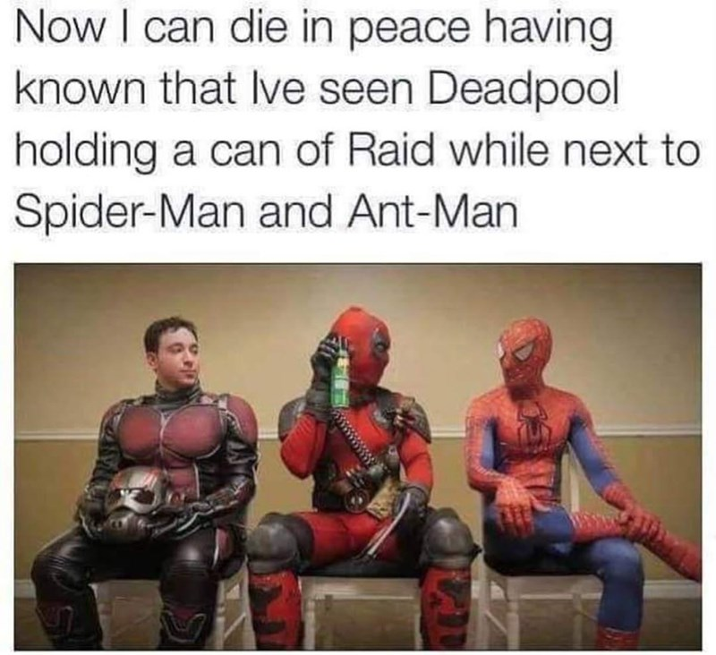 Human - Now I can die in peace having known that Ive seen Deadpool holding a can of Raid while next to Spider-Man and Ant-Man