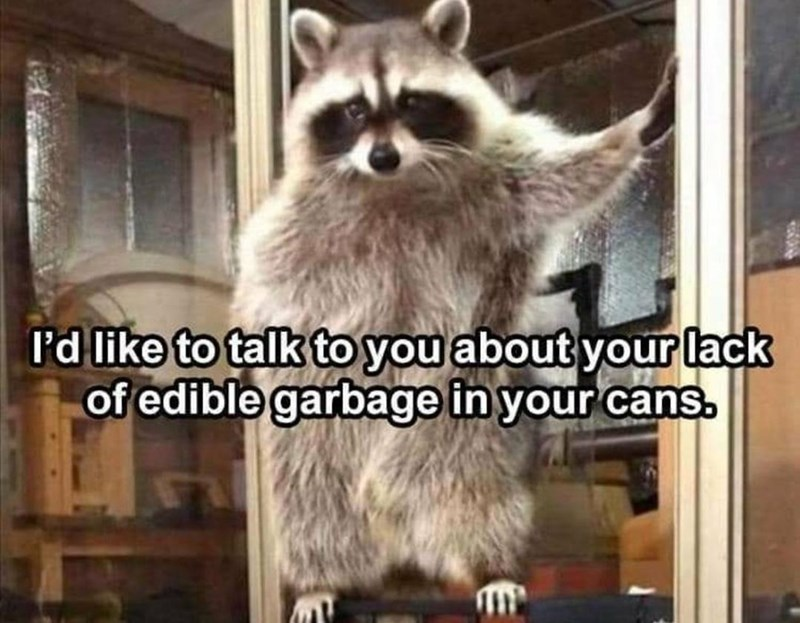 Carnivore - I'd like to talk to you about your lack of edible garbage in your cans.