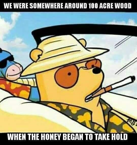 Cartoon - WE WERE SOMEWHERE AROUND 100 ACRE WOOD WHEN THE HONEY BEGAN TO TAKE HOLD