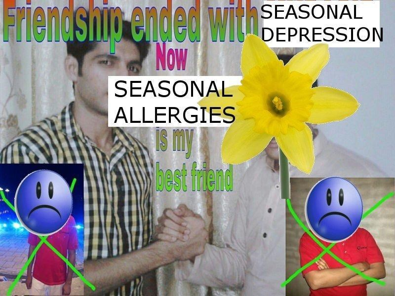 Smile - Friendshio ended with Now SEASONAL DEPRESSION SEASONAL ALLERGIES S my Mbest fend Gome
