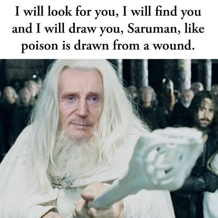 Beard - I will look for you, I will find you and I will draw you, Saruman, like poison is drawn from a wound.