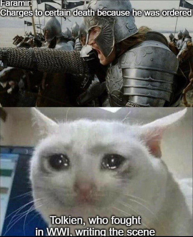 Cat - Faramır Charges to certain death because he was ordered Tolkien, who fought in WWI, writing the scene
