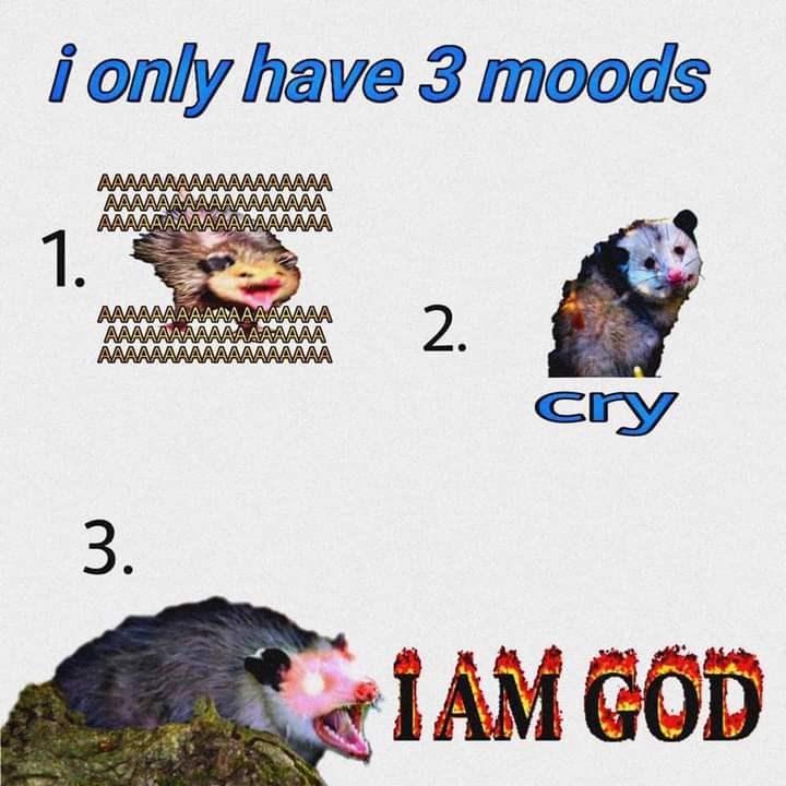 Product - i only have 3 moods AAAAAAA AAAAA AAAAA AAAAAAA AAAAAA AAAAAAA 1. AAAAAAAAAAAAAAAAAA AAAA AAAAAAA AAAA AAAAA cry 3. IAM GOD 2.