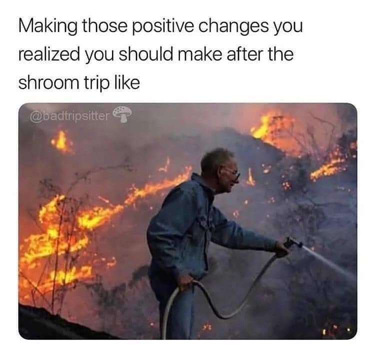 Sleeve - Making those positive changes you realized you should make after the shroom trip like @oadtripsitter