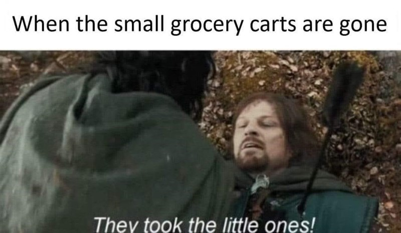 Organism - When the small grocery carts are gone They took the little ones!