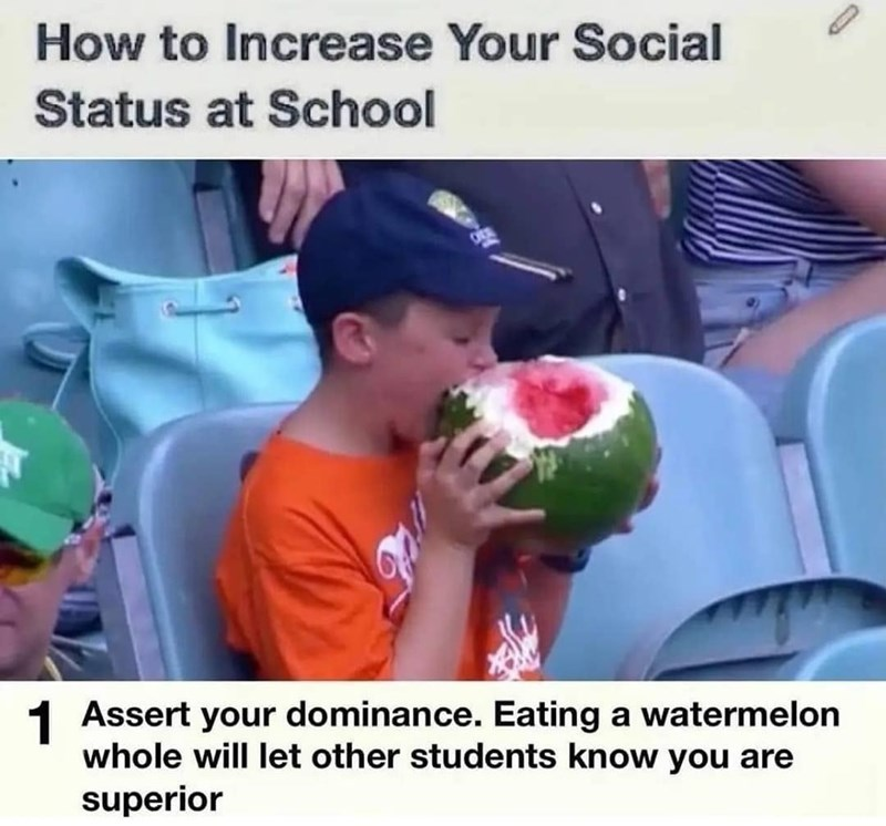 Plant - How to Increase Your Social Status at School 1 Assert your dominance. Eating a watermelon whole will let other students know you are superior