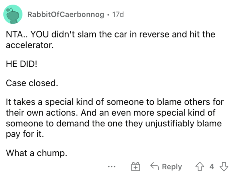 Font - RabbitOfCaerbonnog · 17d NTA.. YOU didn't slam the car in reverse and hit the accelerator. HE DID! Case closed. It takes a special kind of someone to blame others for their own actions. And an even more special kind of someone to demand the one they unjustifiably blame pay for it. What a chump. G Reply ...