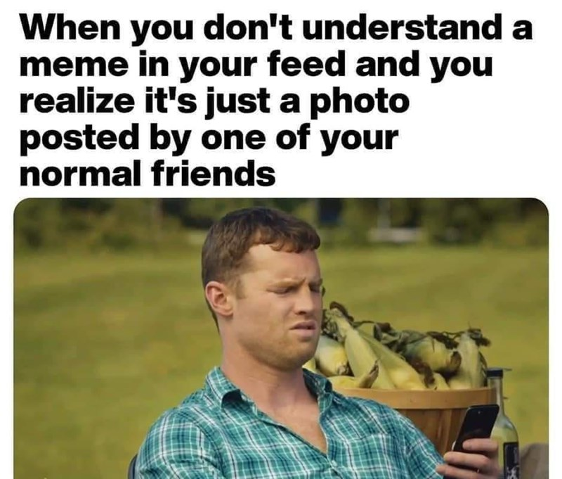 Grass - When you don't understand a meme in your feed and you realize it's just a photo posted by one of your normal friends
