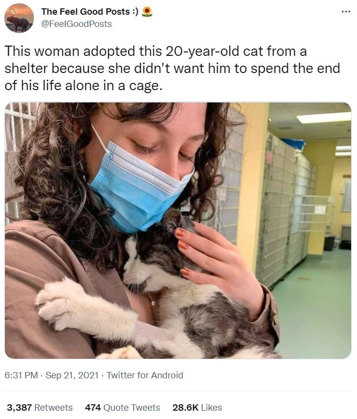 Organism - The Feel Good Posts :) @FeelGoodPosts This woman adopted this 20-year-old cat from a shelter because she didn't want him to spend the end of his life alone in a cage. 6:31 PM - Sep 21, 2021 - Twitter for Android 3,387 Retweets 474 Quote Tweets 28.6K Likes
