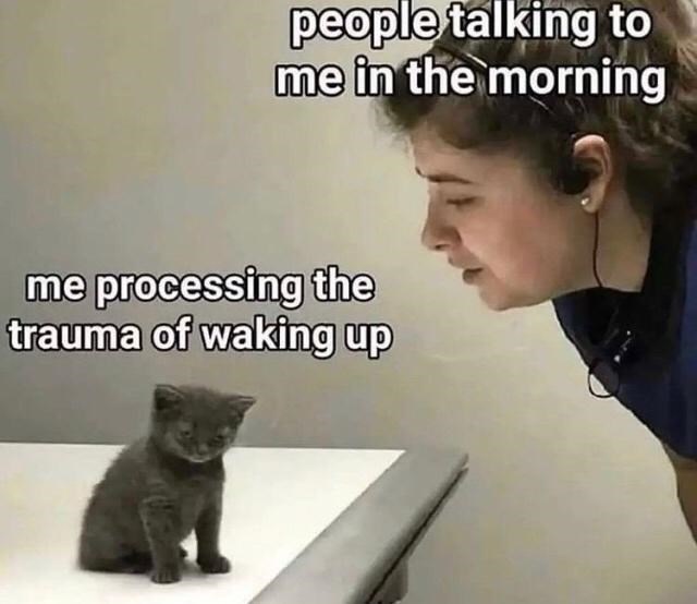 Hair - people talking to me in the morning me processing the trauma of waking up