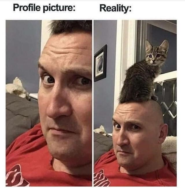 Forehead - Profile picture: Reality: