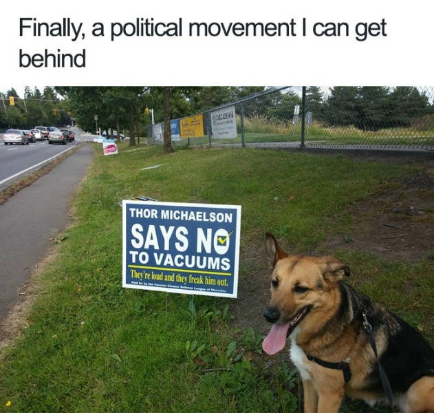 Dog - Finally, a political movement I can get behind THOR MICHAELSON SAYS NO TO VACUUMS They're loud and they freak him out.
