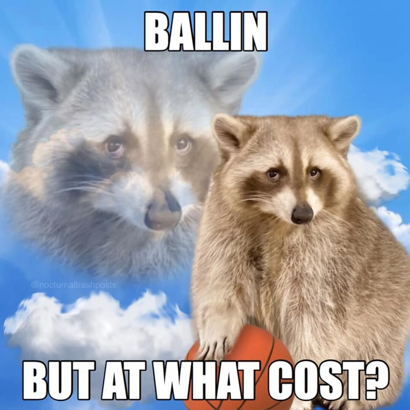 Sky - BALLIN @noctunaltrashposts BUT AT WHAT COST?