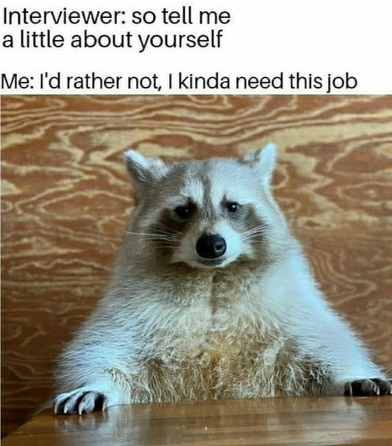 Head - Interviewer: so tell me a little about yourself Me: l'd rather not, I kinda need this job