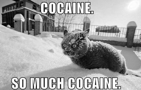 Carnivore - COCAINE. SO MUCH COCAINE.