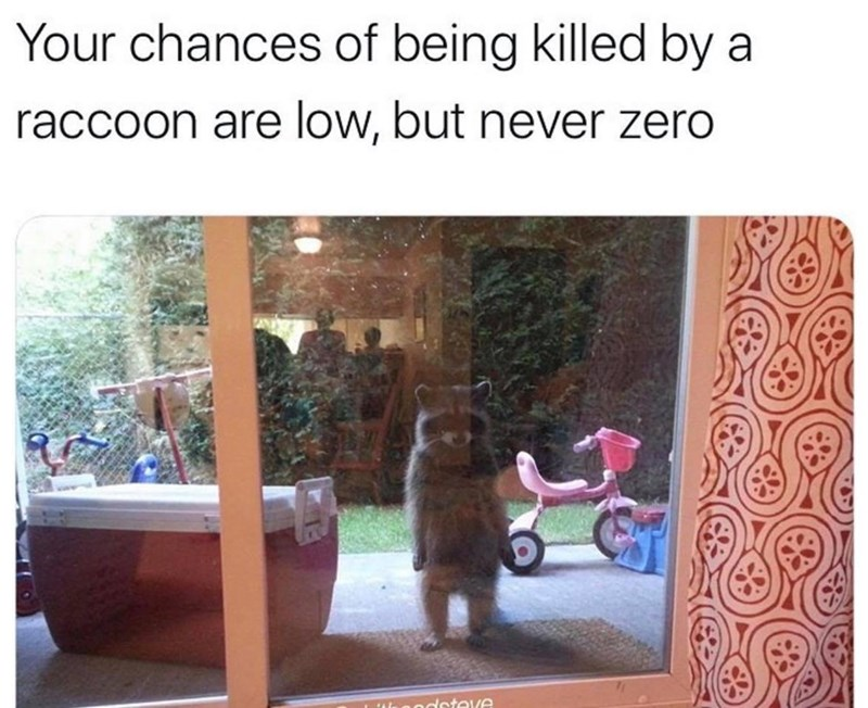 Tire - Your chances of being killed by a raccoon are low, but never zero nodsteve