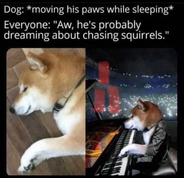 """Dog - Dog: *moving his paws while sleeping* Everyone: """"Aw, he's probably dreaming about chasing squirrels."""""""