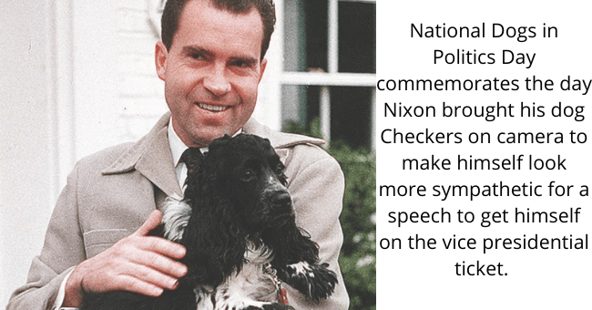 Dog - National Dogs in Politics Day commemorates the day Nixon brought his dog Checkers on camera to make himself look more sympathetic for a speech to get himself on the vice presidential ticket.