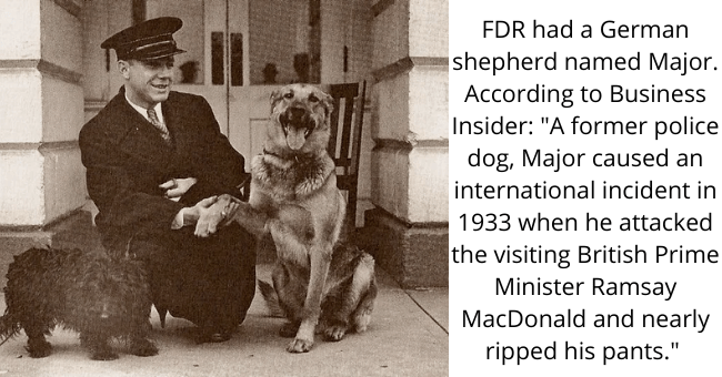 """Dog - FDR had a German shepherd named Major. According to Business Insider: """"A former police dog, Major caused an international incident in 1933 when he attacked the visiting British Prime Minister Ramsay MacDonald and nearly ripped his pants."""""""