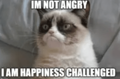 Cat - IM NOT ANGRY I AM HAPPINESS CHALLENGED