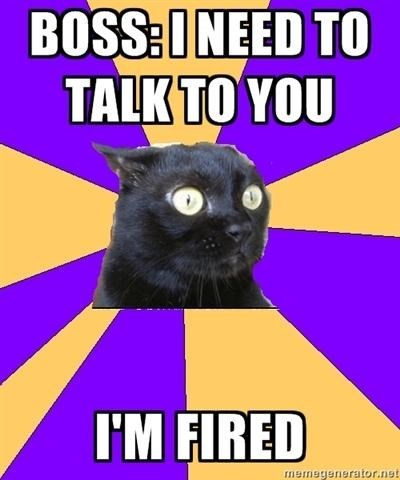 Cat - BOSS:INEED TO TALK TO YOU I'M FIRED memegenerator.net