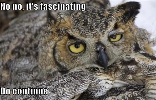Bird - No no, it's fascinating Do continue