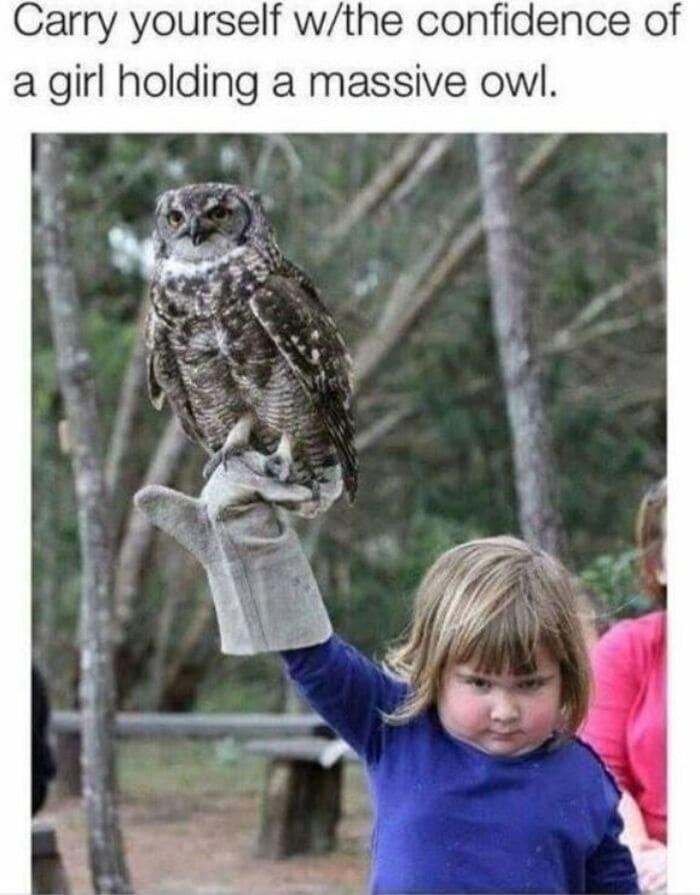 Bird - Carry yourself w/the confidence of a girl holding a massive owl.