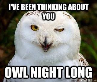 Bird - I'VE BEEN THINKING ABOUT YOU OWL NIGHT LONG culckmenecom
