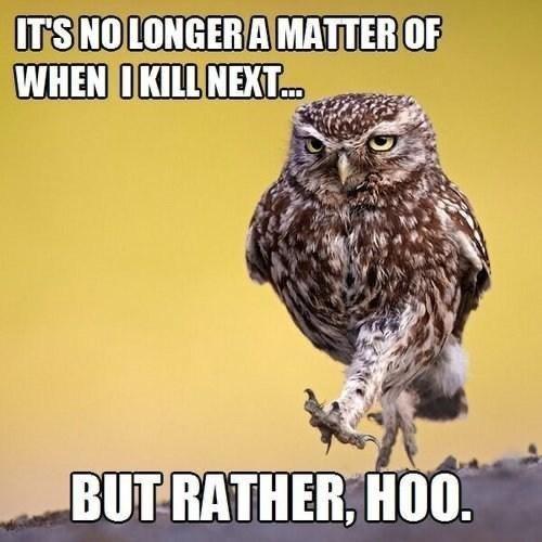 Bird - ITS NO LONGER A MATTER OF WHEN IKILL NEXT. BUT RATHER, HO0.